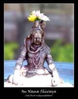 shiva-Vasanthakumar.jpg