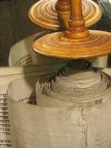 Torah-rubberpaw.jpg
